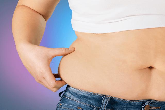 Paleo Diet - Obesity