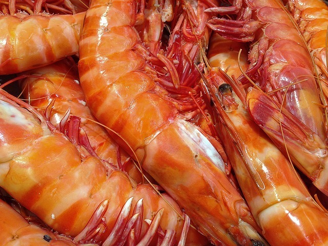 Shrimp - Paleo Diet