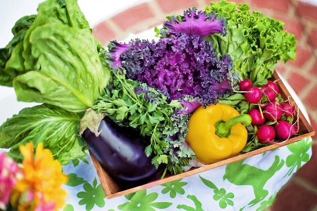 Paleo Food - Vegetables