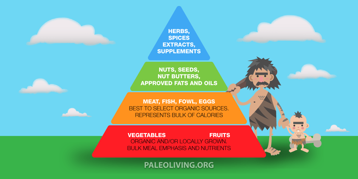 Are Ingredients Paleo Diet Approved