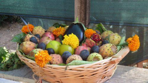 Paleo Diet - Mediterranean Choices