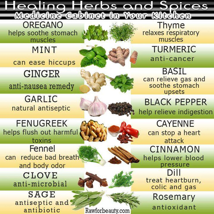 List Of Garden Herbs - Garden Design Ideas