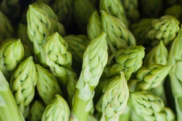 Paleo Diet Foods - Asparagus