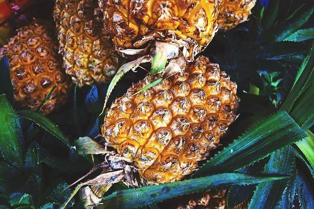 Paleo Food - Fresh Pineapple