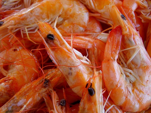 Paleo Food - Shrimp