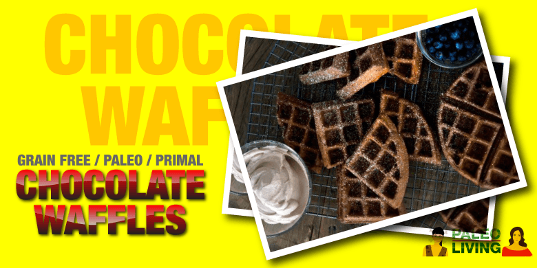 Paleo Recipe - Grain Free Chocolate Waffles