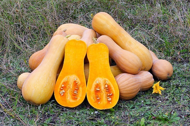Paleo Recipes - Butternut Squash