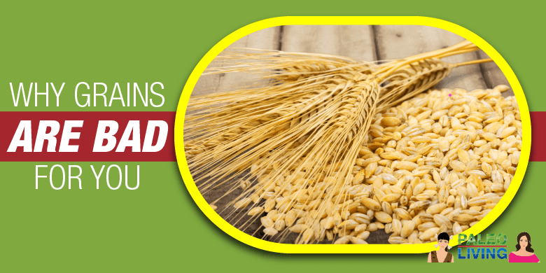 Paleo Food - Why Grains Are Bad For You