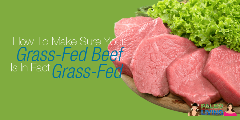 Paleo Food - Grass-Fed Meat