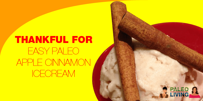Paleo Recipe - Apple Cinnamon Icecream