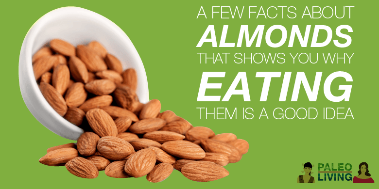 Paleo Food - A Few Facts About Almonds