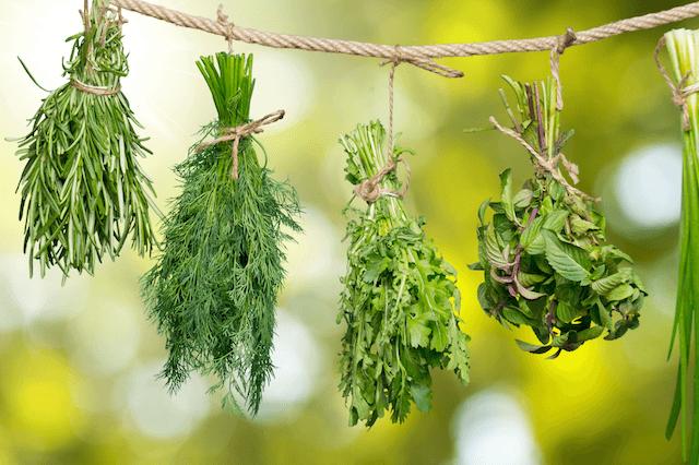 Paleo Food - Dried Herbs