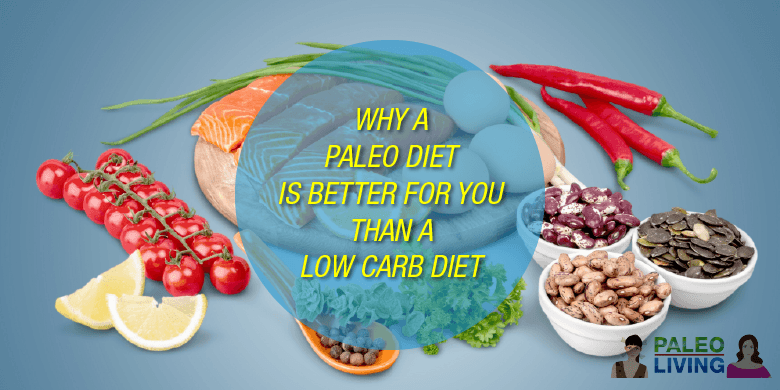 Why Paleo Diet Better Than Low Carb Diet