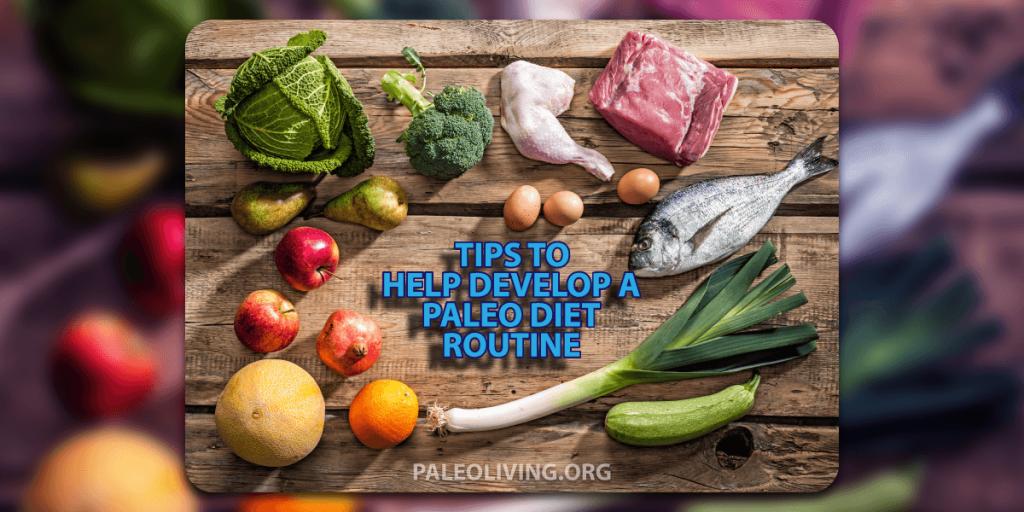 paleo diet routine