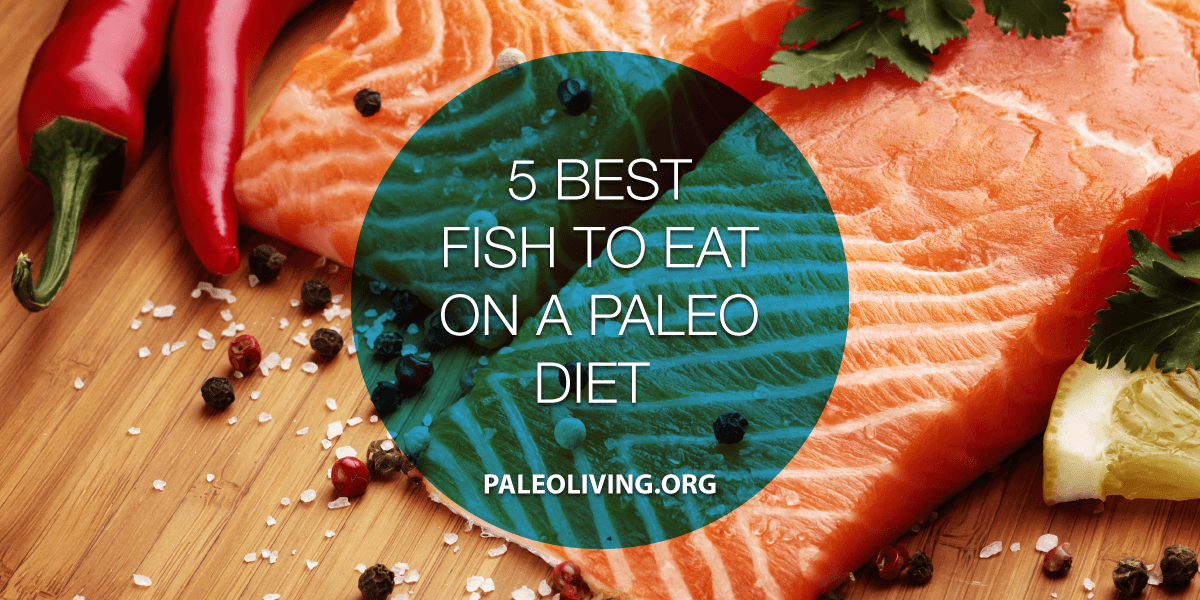 5 best fish to eat on a paleo diet fish for paleo diet for Fish that eat other fish