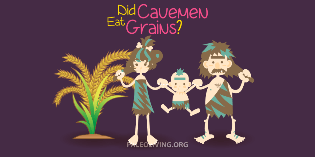 Did Cavemen Eat Grains?