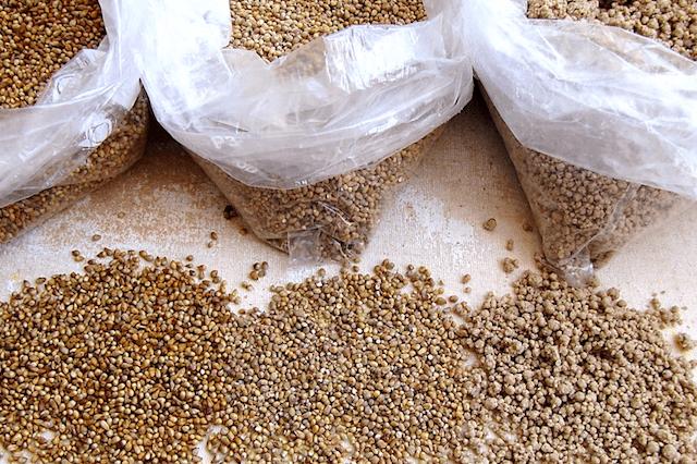 Millet - Seed Or Grain?