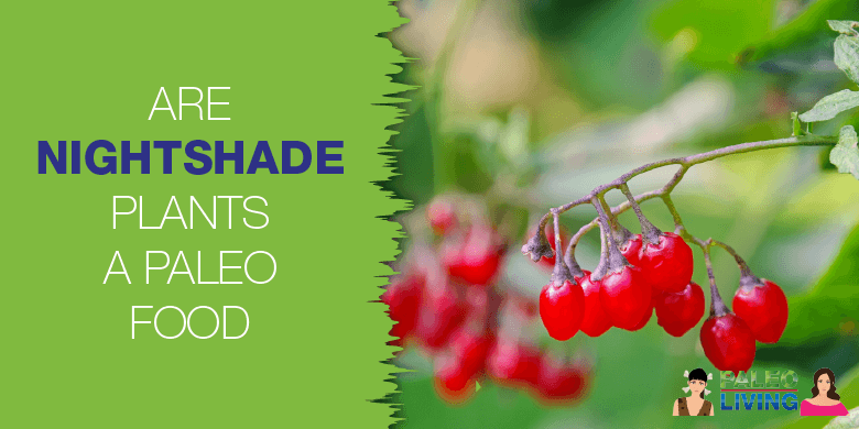 Paleo Food - Nightshade Plants