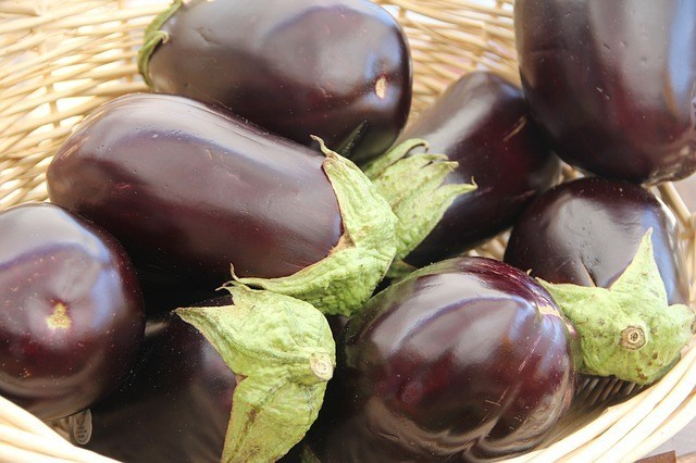 Eggplant A Great Paleo Food