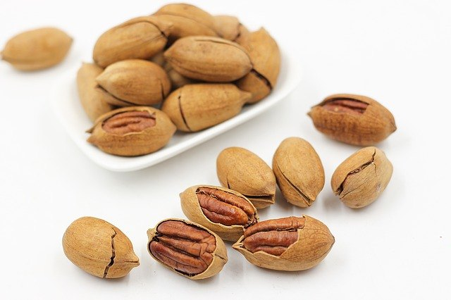 Paleo Diet Food - Pecans