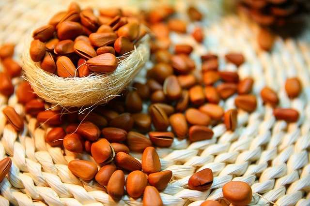 Paleo Food - Pine Nuts